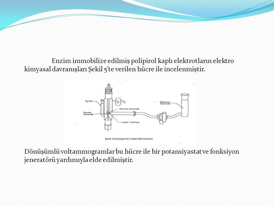 Enzim immobilize edilmiş polipirol kaplı elektrotların elektro kimyasal davranışları Şekil 5'te verilen hücre ile incelenmiştir. Dönüşümlü voltammogra