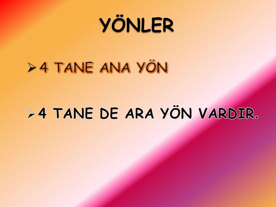 YÖNLER
