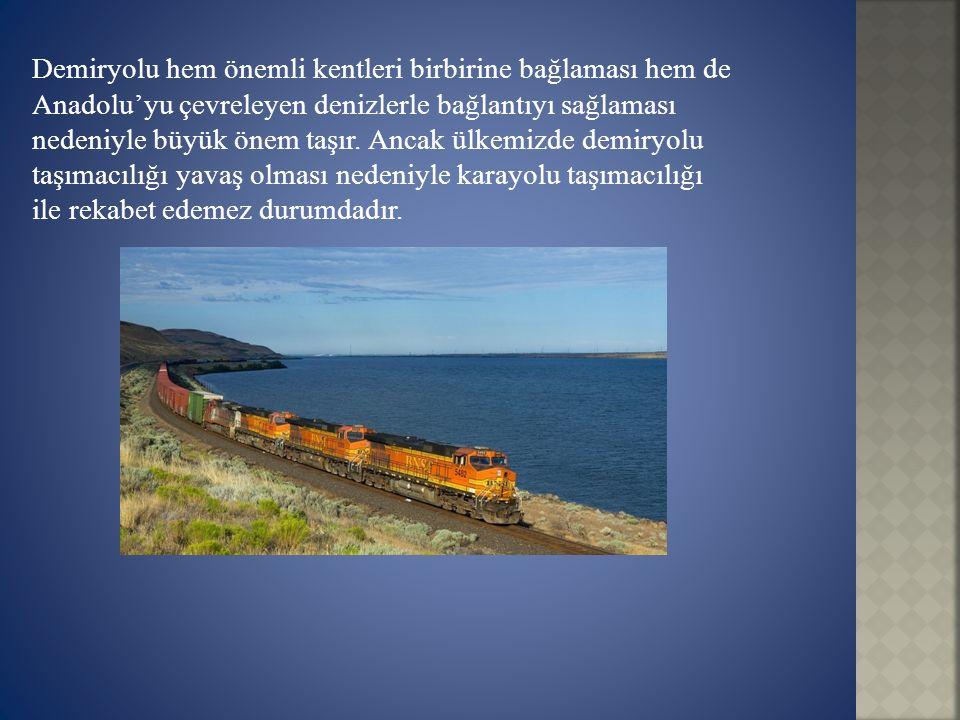 Demiryolu hem önemli kentleri birbirine bağlaması hem de Anadolu'yu çevreleyen denizlerle bağlantıyı sağlaması nedeniyle büyük önem taşır. Ancak ülkem