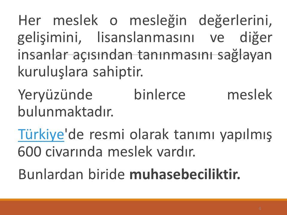Türkiye'de gerçekte incelenecek olursa muhasebe mesleğinde mesleki ve etik değerlere ilişkin bir tek mesleğin bağlı olduğu tek kuruluş olan TURMOB tarafından özel olarak hazırlanmış; Bir yönetmelik ve, Mecburi Meslek Kararı vardır.