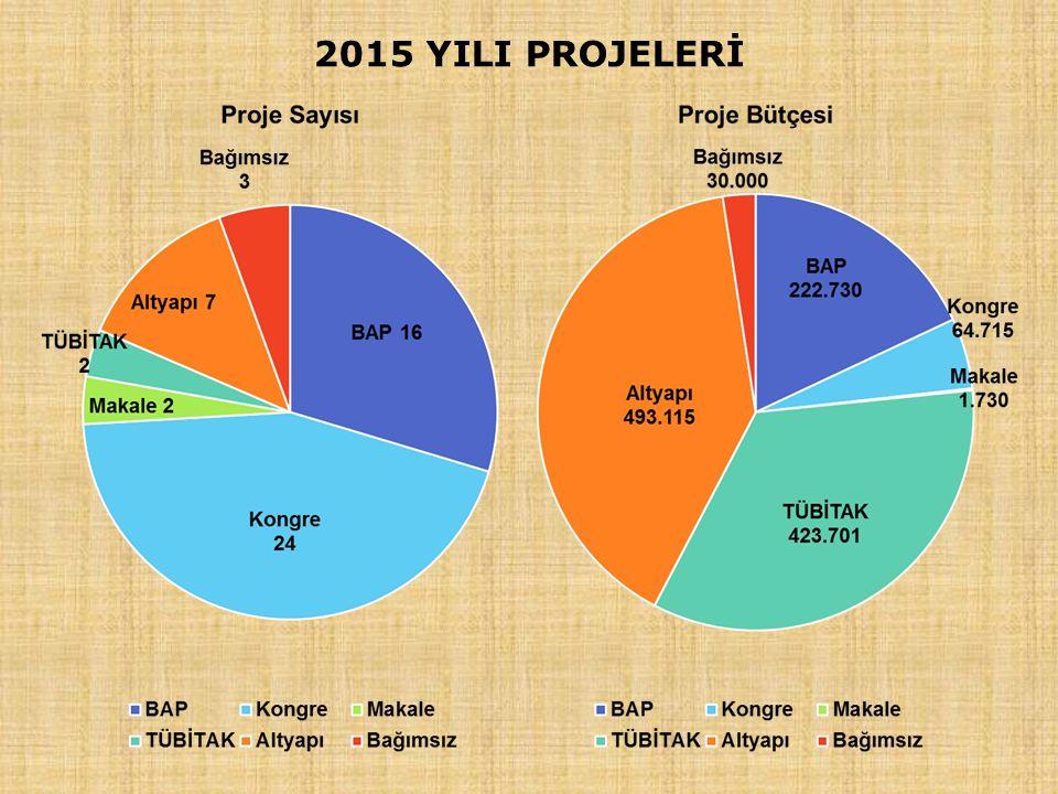 2015 YILI PROJELERİ