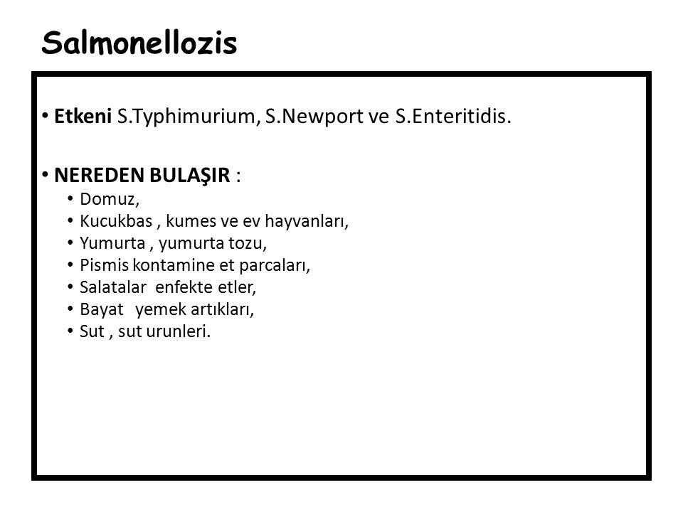 Salmonellozis Etkeni S.Typhimurium, S.Newport ve S.Enteritidis. NEREDEN BULAŞIR : Domuz, Kucukbas, kumes ve ev hayvanları, Yumurta, yumurta tozu, Pism