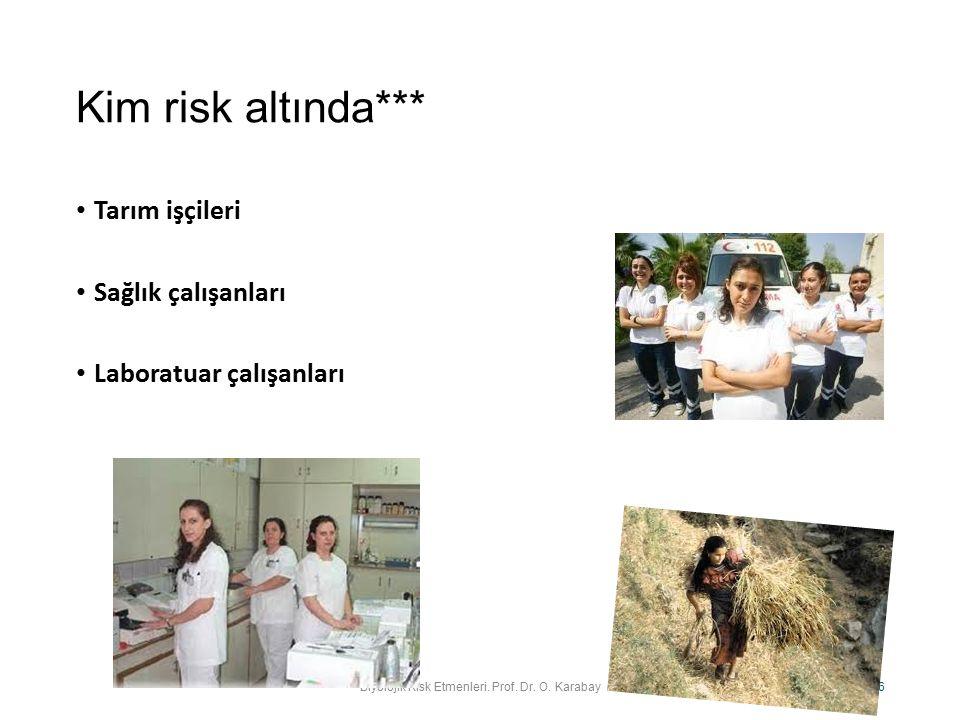 Kim risk altında*** Tarım işçileri Sağlık çalışanları Laboratuar çalışanları Biyolojik Risk Etmenleri. Prof. Dr. O. Karabay 6