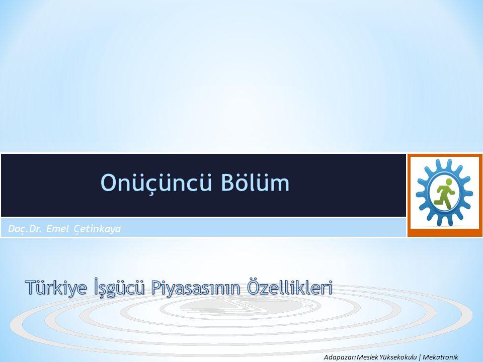Türkiye işgücü piyasasına damgasını vuran en temel özelliklerinden biri düşük istihdam oranıdır.