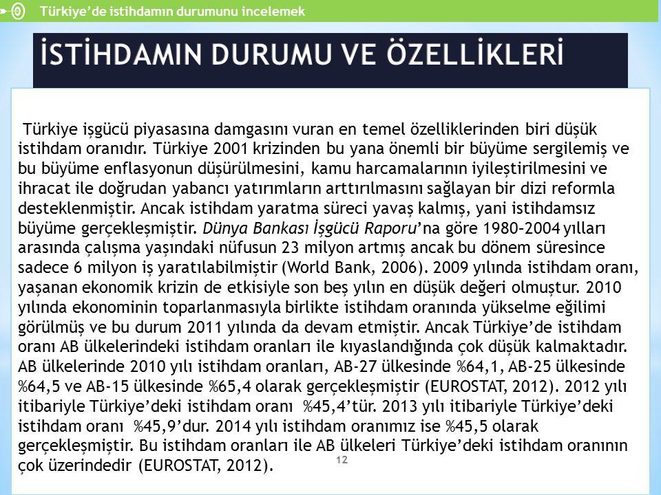 Türkiye işgücü piyasasına damgasını vuran en temel özelliklerinden biri düşük istihdam oranıdır. Türkiye 2001 krizinden bu yana önemli bir büyüme serg