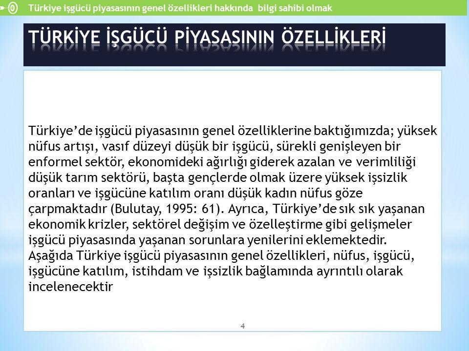 Türkiye'de işgücü piyasasının genel özelliklerine baktığımızda; yüksek nüfus artışı, vasıf düzeyi düşük bir işgücü, sürekli genişleyen bir enformel se