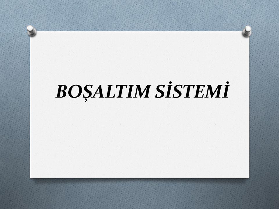 BOŞALTIM SİSTEMİ