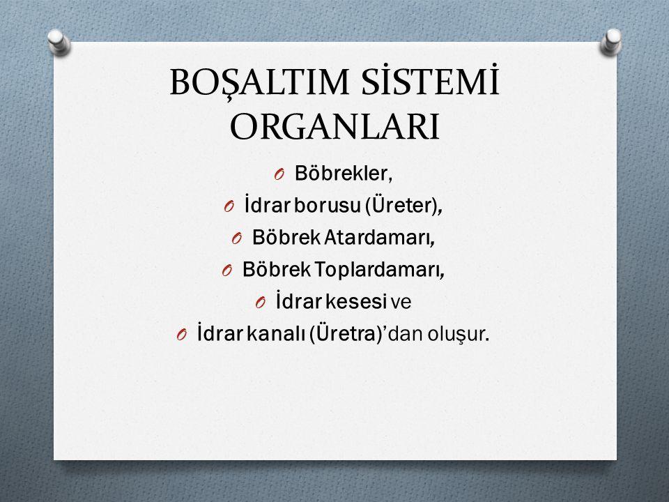 YAZILI KAYNAKÇA O http://ders.eba.gov.tr/proxy/MSStudentPlay er_v0.0.30/index.html#/main/curriculum/t rue/3/7/feny/1/3?currID=1de55b87211e 0333a60deecafde1caab&viewState=viewSt ateResources&openWorkplan=false O bosaltim- - sistemi PowerPoint sunumu O http://www.meb.gov.tr/2015-2016-egitim- ogretim-yilinda-okutulacak-ilk-ve-orta- ogretim-ders-kitaplari/duyuru/9544/tr