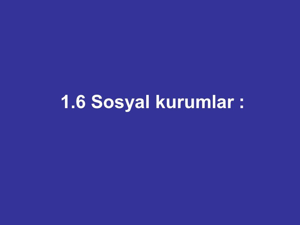 1.6 Sosyal kurumlar :