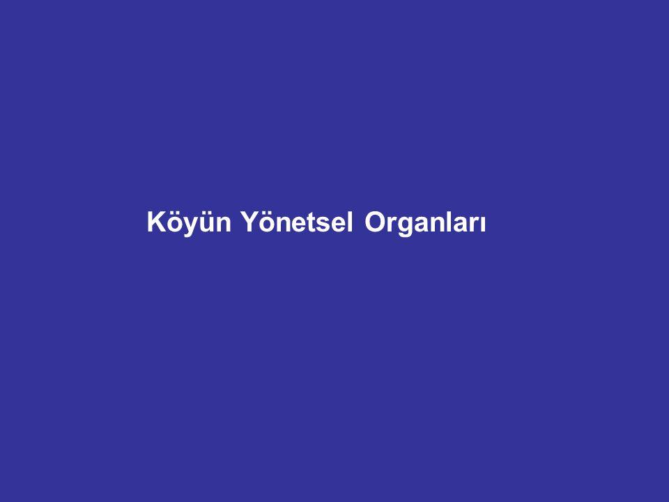 Köyün Yönetsel Organları