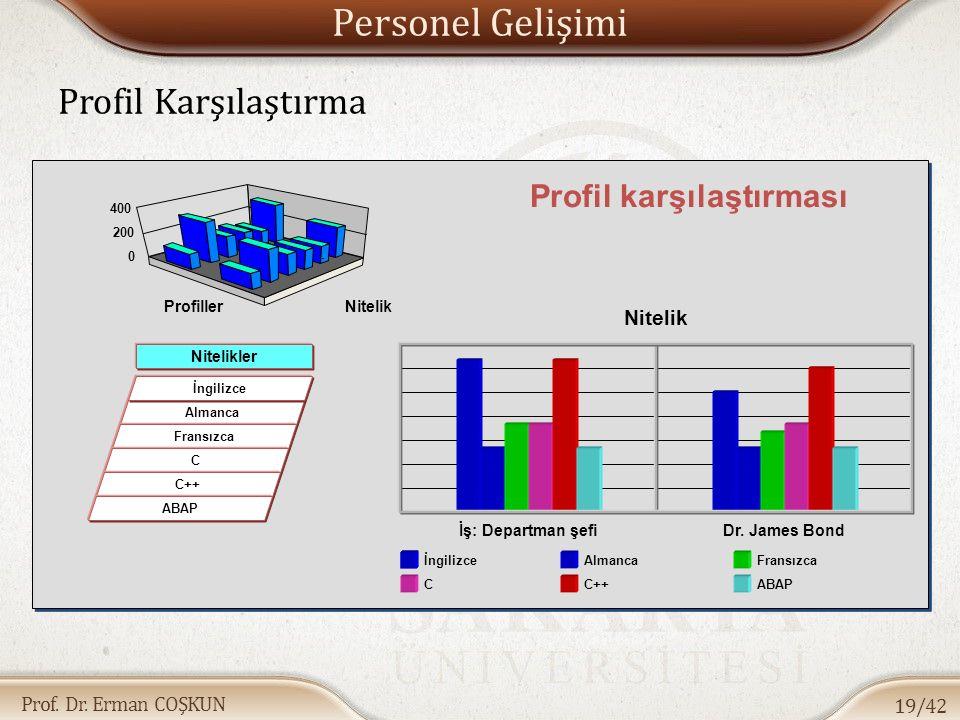 Prof. Dr. Erman COŞKUN Personel Gelişimi Profil Karşılaştırma 19/42 Profil karşılaştırması Nitelikler Almanca İngilizce Fransızca C C++ ABAP 0 200 400