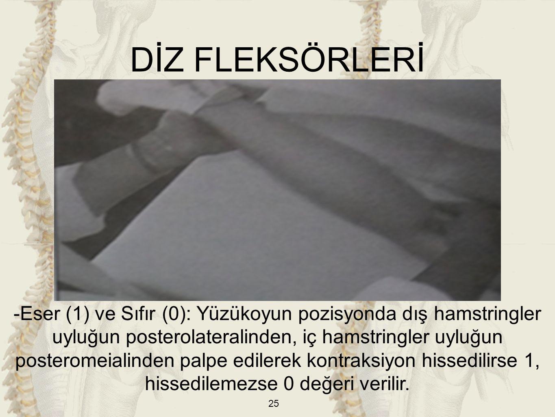 25 DİZ FLEKSÖRLERİ -Eser (1) ve Sıfır (0): Yüzükoyun pozisyonda dış hamstringler uyluğun posterolateralinden, iç hamstringler uyluğun posteromeialinde