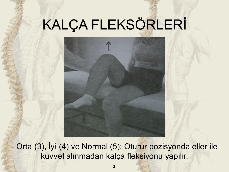 3 - Orta (3), İyi (4) ve Normal (5): Oturur pozisyonda eller ile kuvvet alınmadan kalça fleksiyonu yapılır.