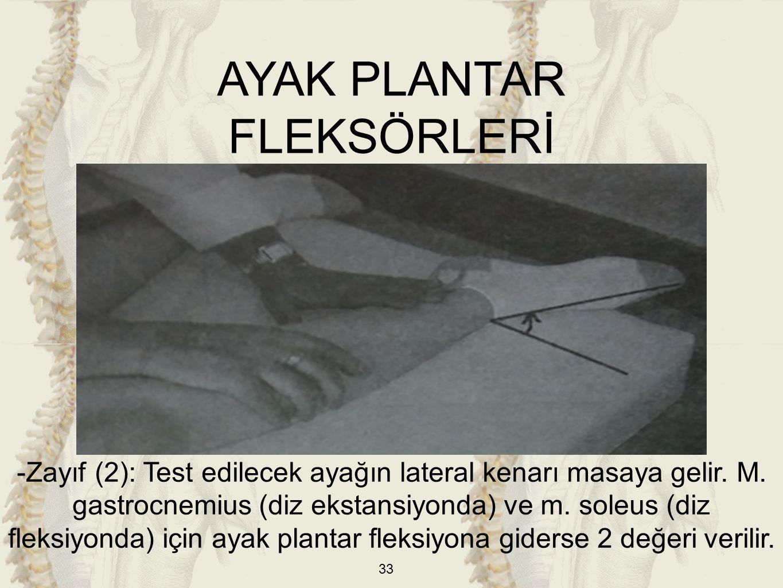 33 -Zayıf (2): Test edilecek ayağın lateral kenarı masaya gelir. M. gastrocnemius (diz ekstansiyonda) ve m. soleus (diz fleksiyonda) için ayak plantar