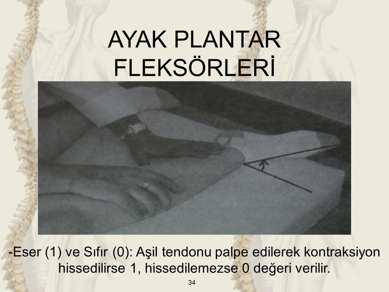 34 -Eser (1) ve Sıfır (0): Aşil tendonu palpe edilerek kontraksiyon hissedilirse 1, hissedilemezse 0 değeri verilir. AYAK PLANTAR FLEKSÖRLERİ