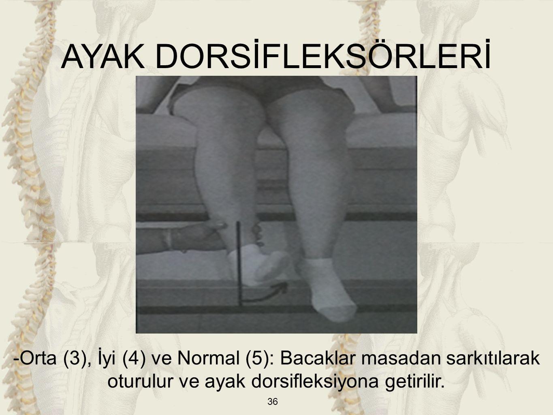 36 -Orta (3), İyi (4) ve Normal (5): Bacaklar masadan sarkıtılarak oturulur ve ayak dorsifleksiyona getirilir. AYAK DORSİFLEKSÖRLERİ