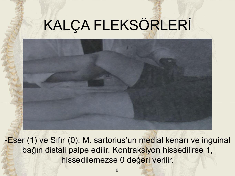 6 KALÇA FLEKSÖRLERİ -Eser (1) ve Sıfır (0): M. sartorius'un medial kenarı ve inguinal bağın distali palpe edilir. Kontraksiyon hissedilirse 1, hissedi