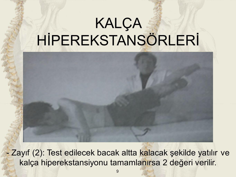 30 AYAK PLANTAR FLEKSÖRLERİ -Kaslar: a) M.gastrocnemius b) M.