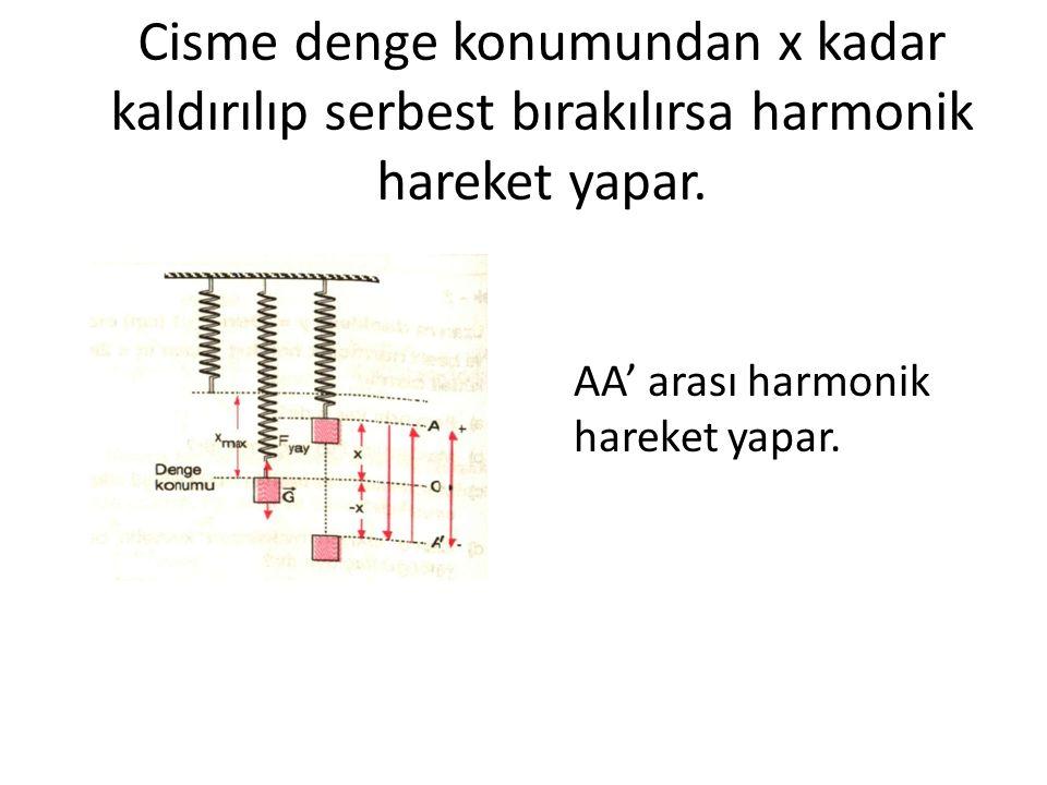 Cisme denge konumundan x kadar kaldırılıp serbest bırakılırsa harmonik hareket yapar. AA' arası harmonik hareket yapar.
