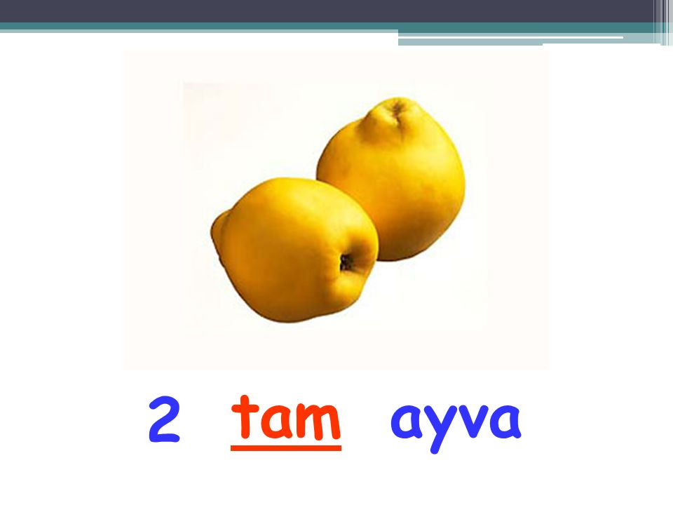 1 ayvatam
