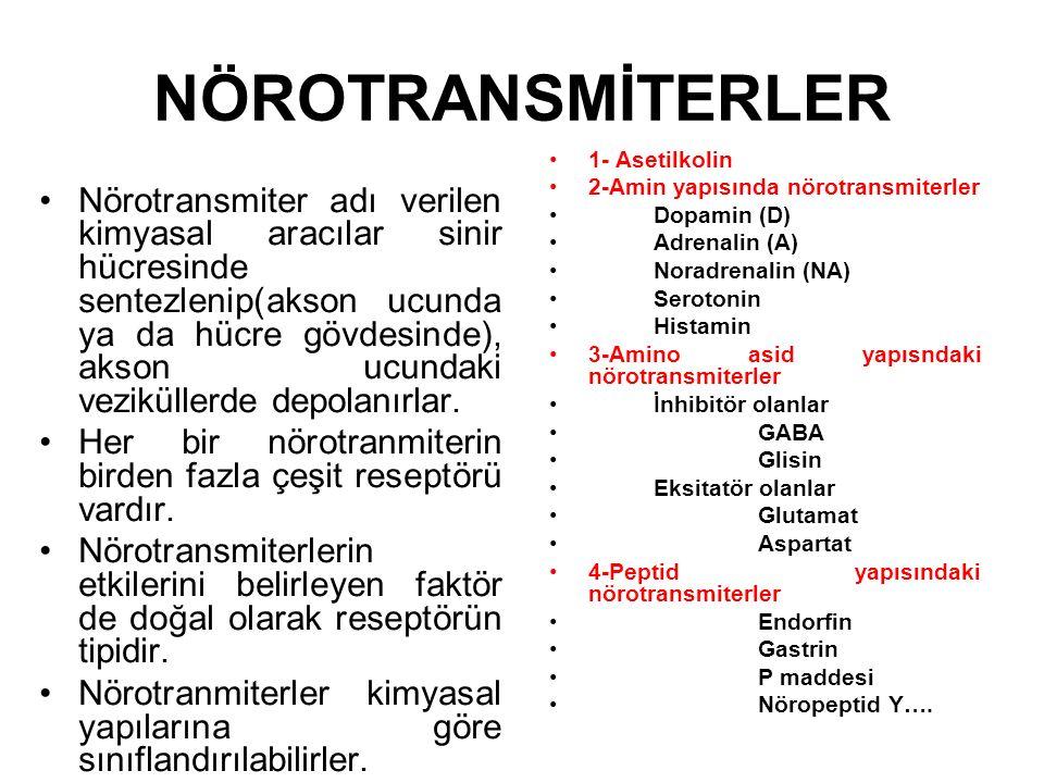 NÖROTRANSMİTERLER Nörotransmiter adı verilen kimyasal aracılar sinir hücresinde sentezlenip(akson ucunda ya da hücre gövdesinde), akson ucundaki veziküllerde depolanırlar.