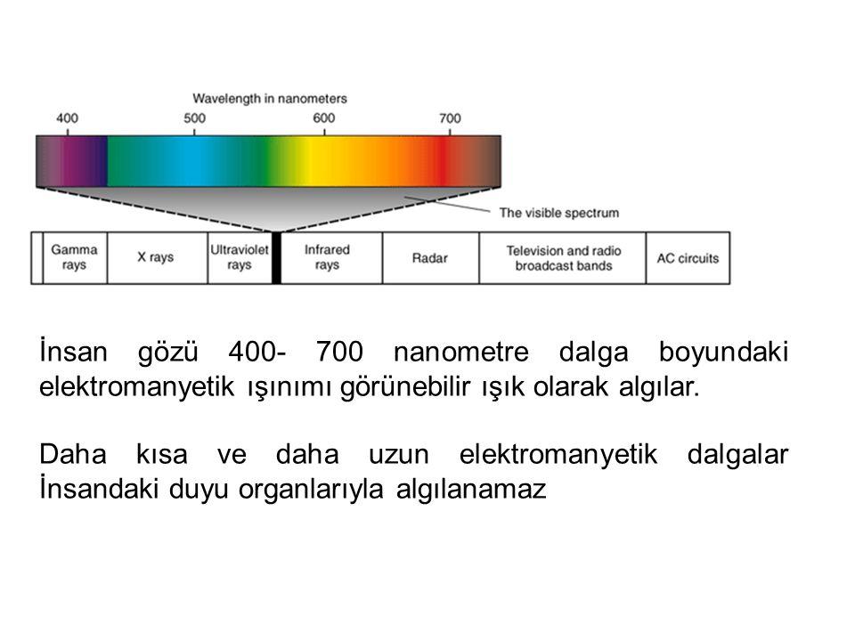 İnsan gözü 400- 700 nanometre dalga boyundaki elektromanyetik ışınımı görünebilir ışık olarak algılar.