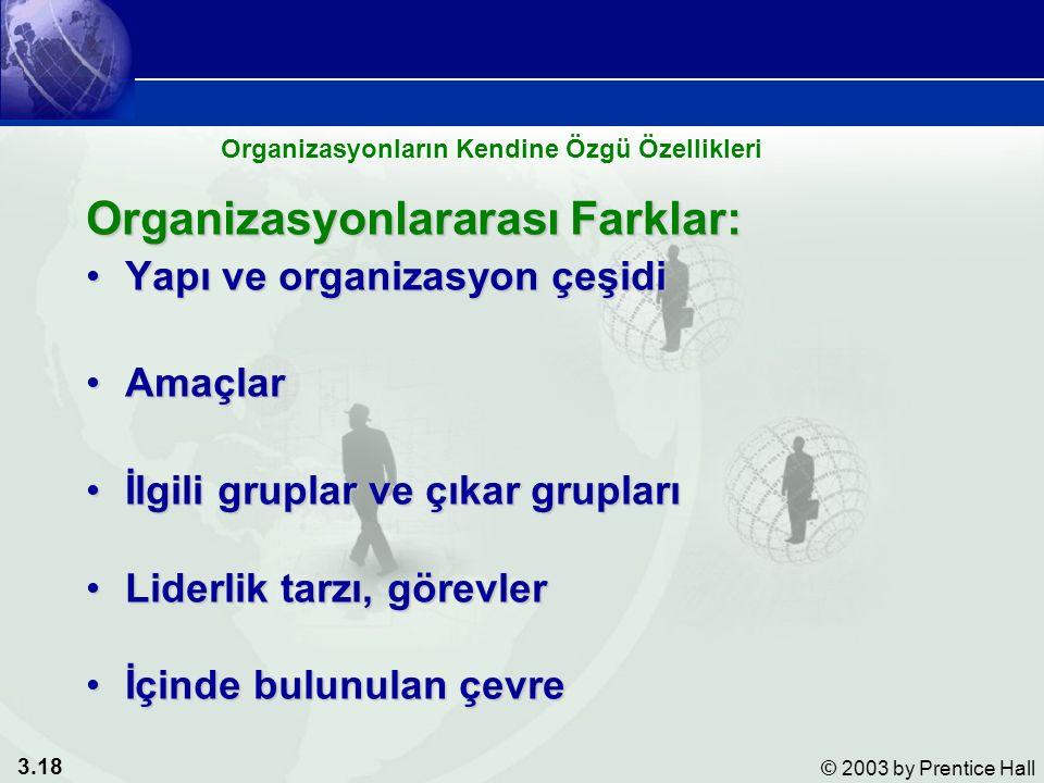 3.18 © 2003 by Prentice Hall Organizasyonlararası Farklar: Yapı ve organizasyon çeşidiYapı ve organizasyon çeşidi AmaçlarAmaçlar İlgili gruplar ve çıkar gruplarıİlgili gruplar ve çıkar grupları Liderlik tarzı, görevlerLiderlik tarzı, görevler İçinde bulunulan çevreİçinde bulunulan çevre Organizasyonların Kendine Özgü Özellikleri