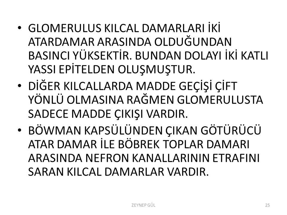 GLOMERULUS KILCAL DAMARLARI İKİ ATARDAMAR ARASINDA OLDUĞUNDAN BASINCI YÜKSEKTİR.