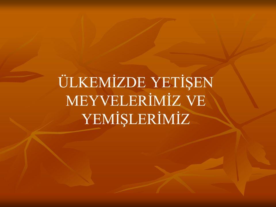 Bursa'nın şeftalisi, Kilodur bir tanesi. Şeftaliyi kim sevmez, Tadına doyum olmaz.
