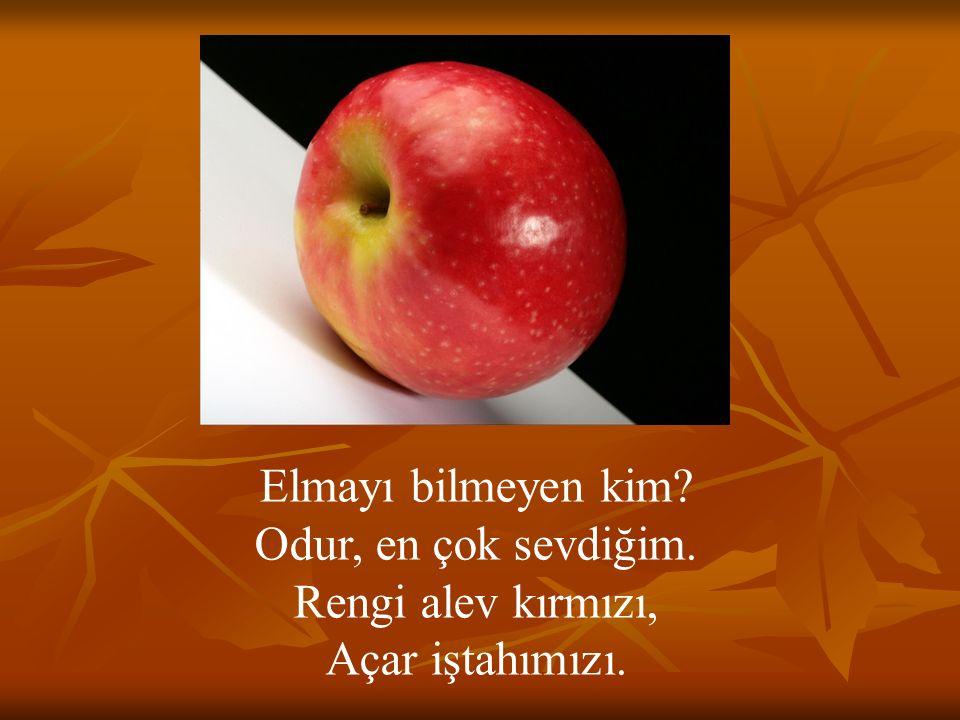 Elmayı bilmeyen kim? Odur, en çok sevdiğim. Rengi alev kırmızı, Açar iştahımızı.