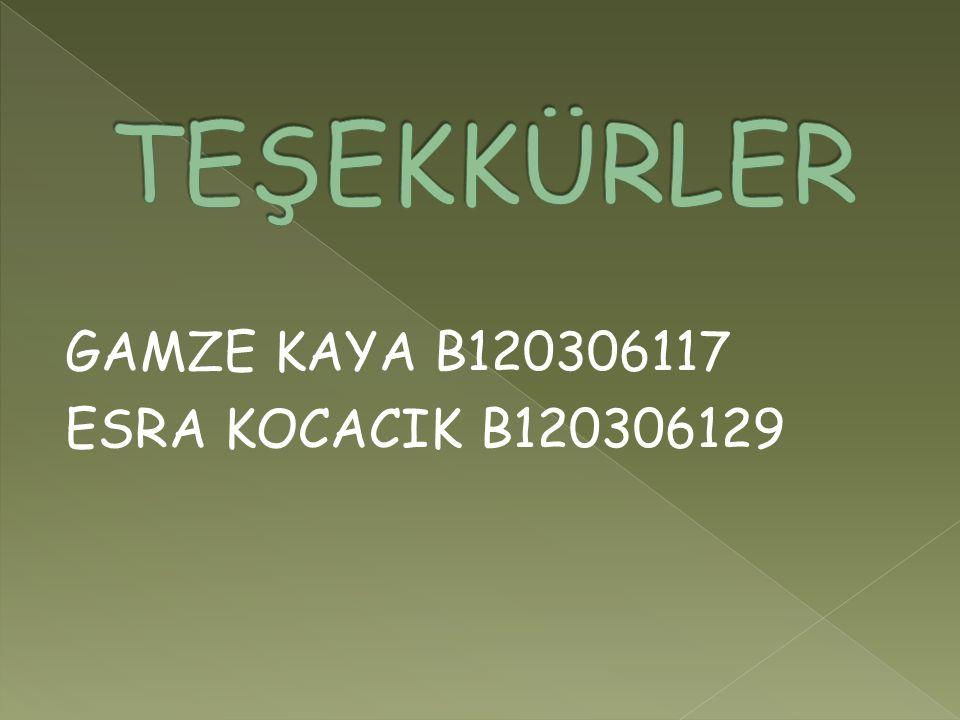 GAMZE KAYA B120306117 ESRA KOCACIK B120306129