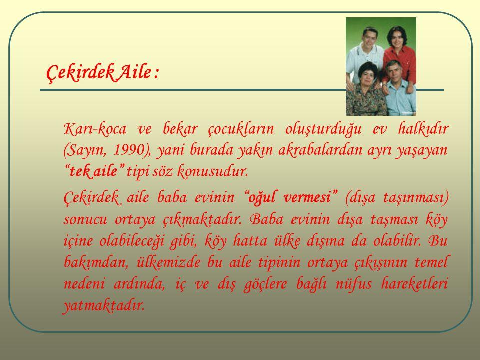 Çekirdek Aile : Karı-koca ve bekar çocukların oluşturduğu ev halkıdır (Sayın, 1990), yani burada yakın akrabalardan ayrı yaşayan tek aile tipi söz konusudur.