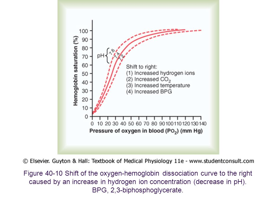 Figure 40-10 Shift of the oxygen-hemoglobin dissociation curve to the right caused by an increase in hydrogen ion concentration (decrease in pH). BPG,