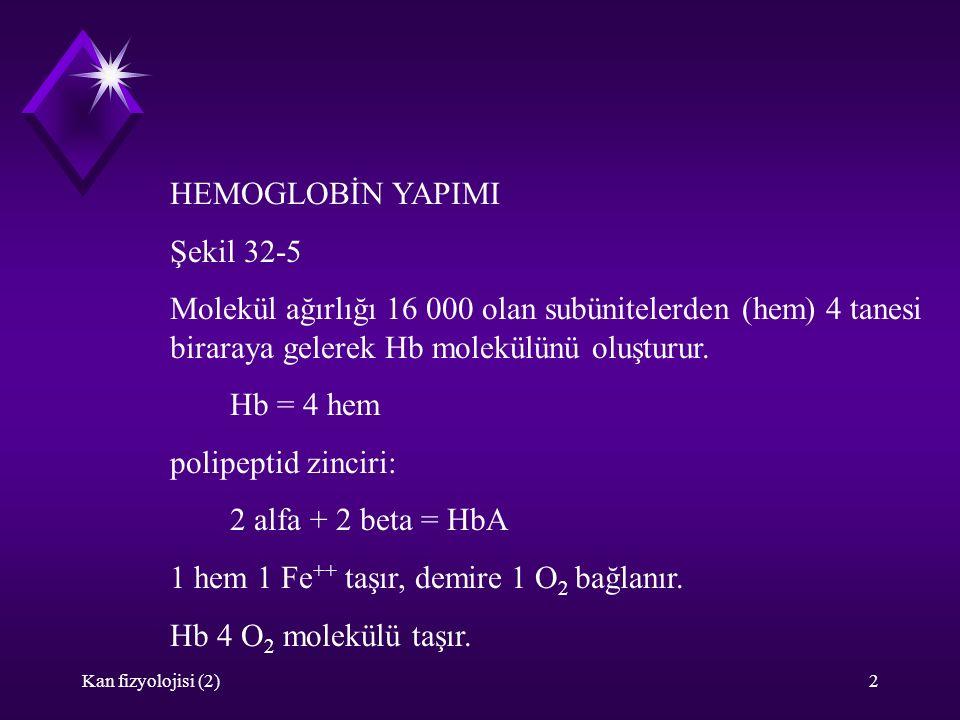 Kan fizyolojisi (2)2 HEMOGLOBİN YAPIMI Şekil 32-5 Molekül ağırlığı 16 000 olan subünitelerden (hem) 4 tanesi biraraya gelerek Hb molekülünü oluşturur.