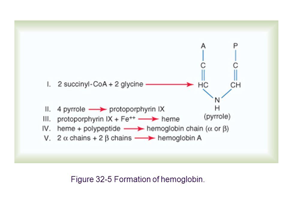 Kan fizyolojisi (2)24 eritrositler yaşlandıkça daha frajil olurlar.