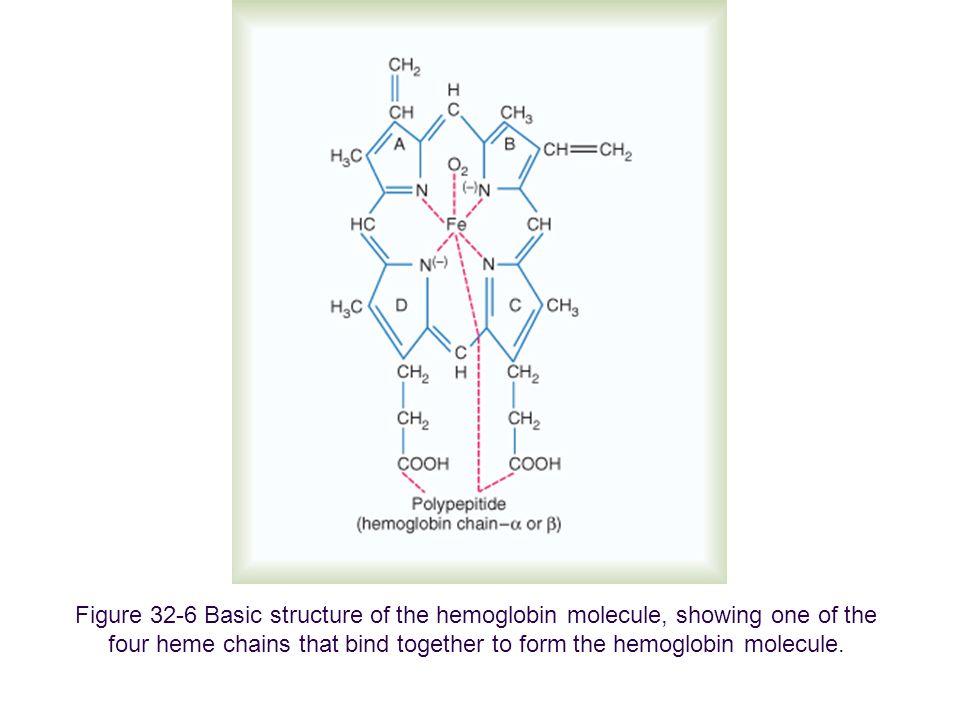 Figure 27-17: Diagrammatic representation of a molecule of hemoglobin A, showing the four subunits.