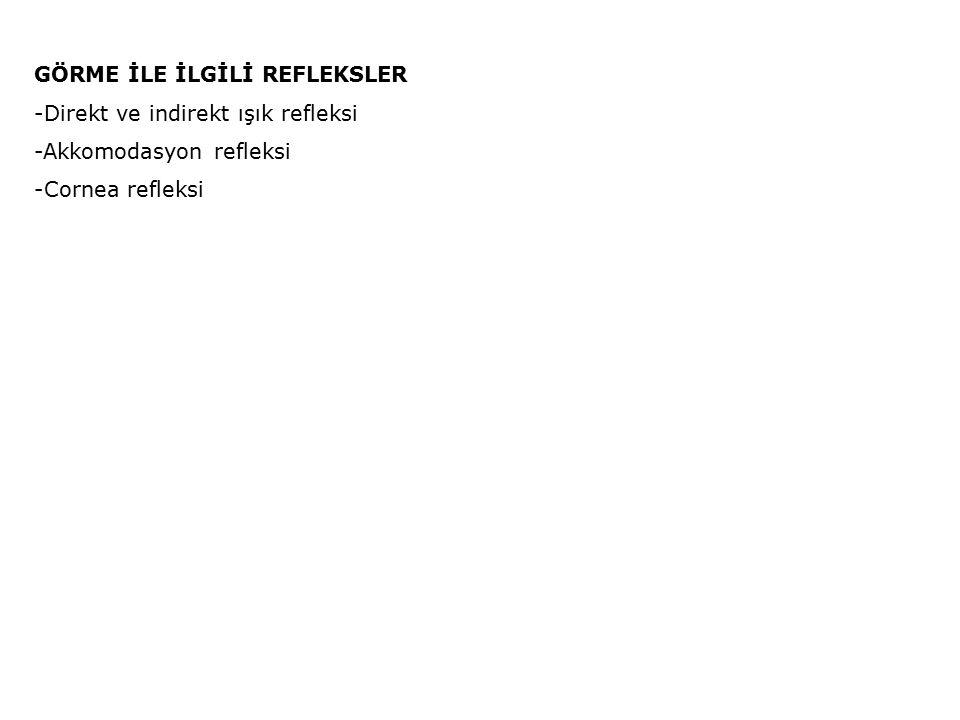 GÖRME İLE İLGİLİ REFLEKSLER -Direkt ve indirekt ışık refleksi -Akkomodasyon refleksi -Cornea refleksi