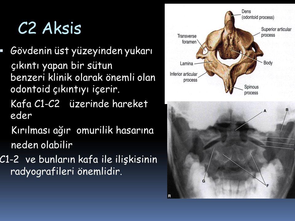 C2 Aksis  Gövdenin üst yüzeyinden yukarı çıkıntı yapan bir sütun benzeri klinik olarak önemli olan odontoid çıkıntıyı içerir. Kafa C1-C2 üzerinde har