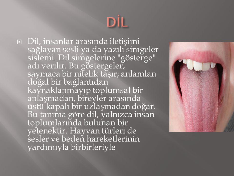  Dil, insanlar arasında iletişimi sağlayan sesli ya da yazılı simgeler sistemi. Dil simgelerine