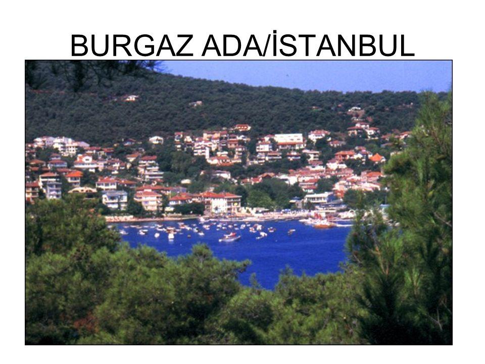 BURGAZ ADA/İSTANBUL