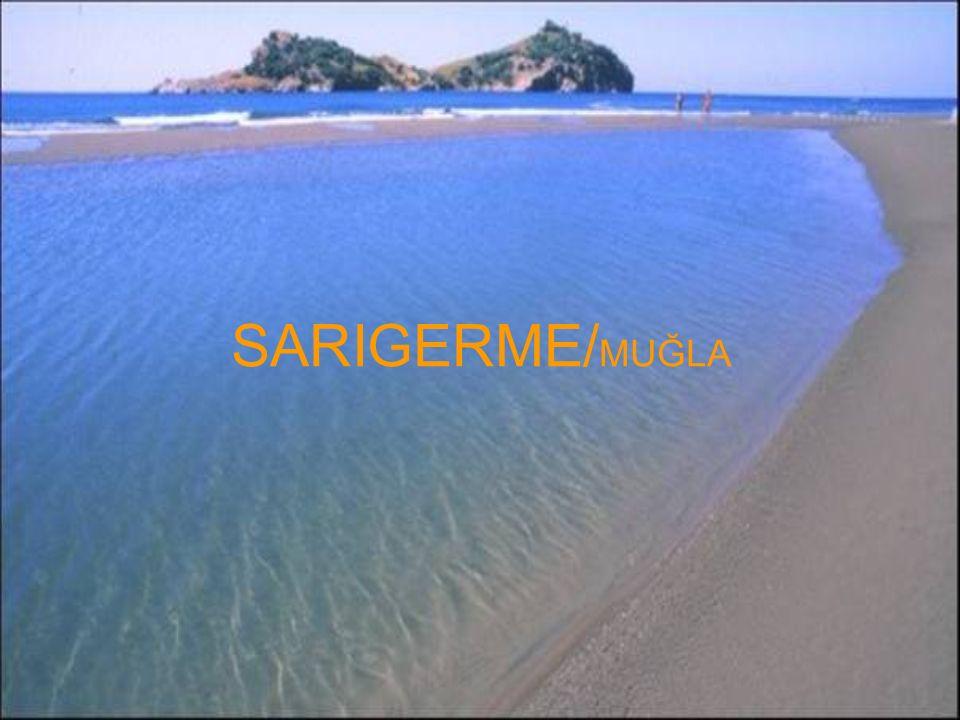 SARIGERME/ MUĞLA