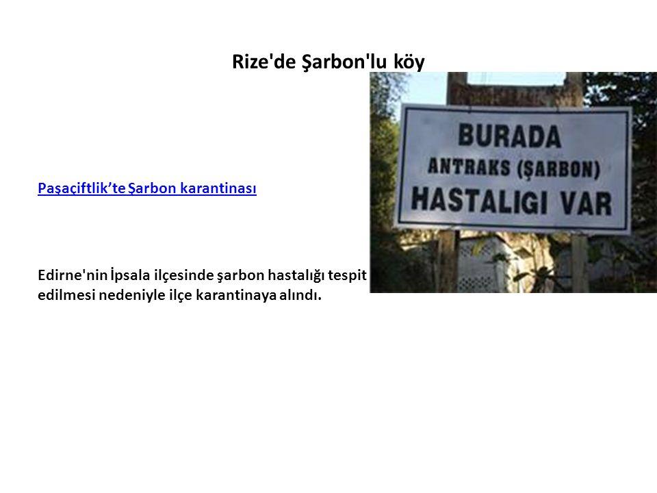 Rize de Şarbon lu köy Paşaçiftlik'te Şarbon karantinası Edirne nin İpsala ilçesinde şarbon hastalığı tespit edilmesi nedeniyle ilçe karantinaya alındı.