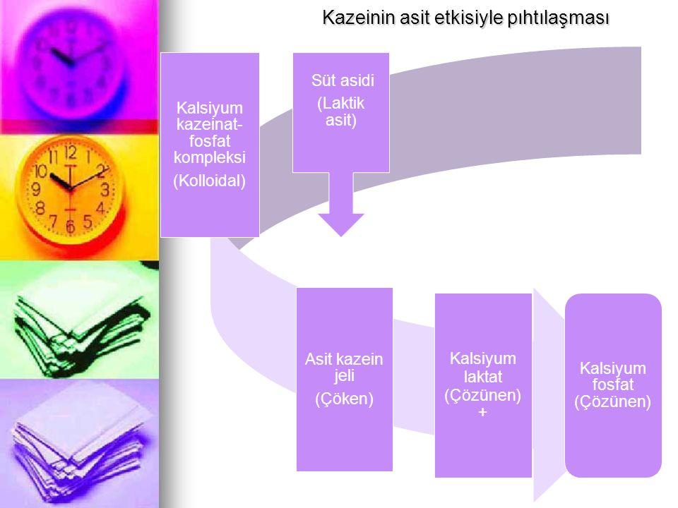 Kalsiyum kazeinat- fosfat kompleksi (Kolloidal) Süt asidi (Laktik asit) Asit kazein jeli (Çöken) Kalsiyum laktat (Çözünen) + Kalsiyum fosfat (Çözünen)