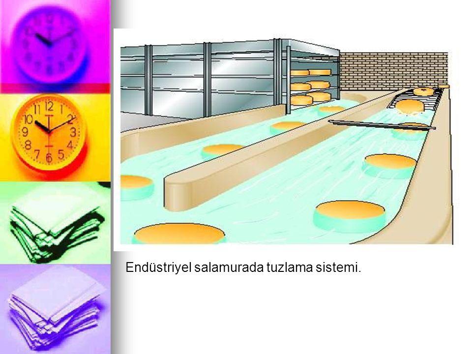 Endüstriyel salamurada tuzlama sistemi.