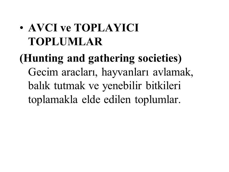 AVCI ve TOPLAYICI TOPLUMLAR (Hunting and gathering societies) Gecim aracları, hayvanları avlamak, balık tutmak ve yenebilir bitkileri toplamakla elde