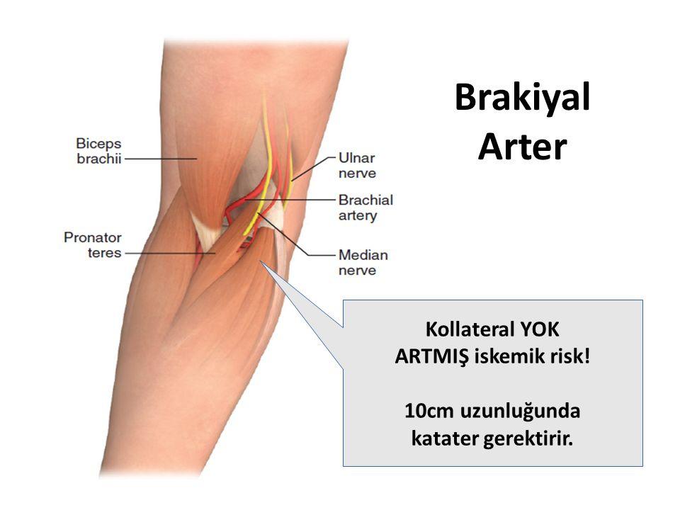 Brakiyal Arter Kollateral YOK ARTMIŞ iskemik risk! 10cm uzunluğunda katater gerektirir.