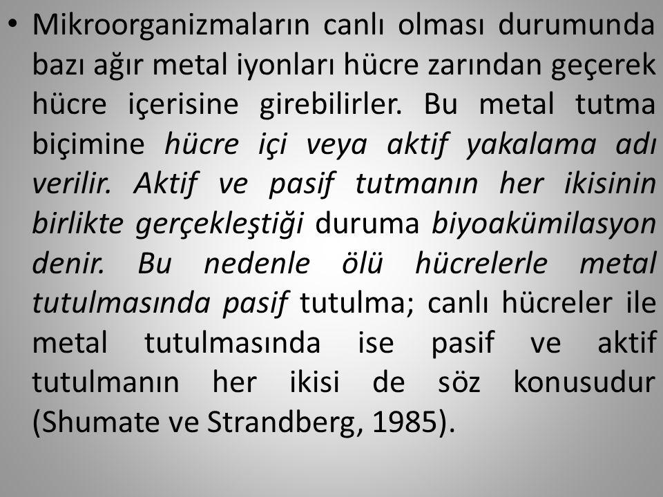 Kaynaklar Aksu, Z., Açõkel, Ü., Kabasakal, E., Tezer, S., (2002).