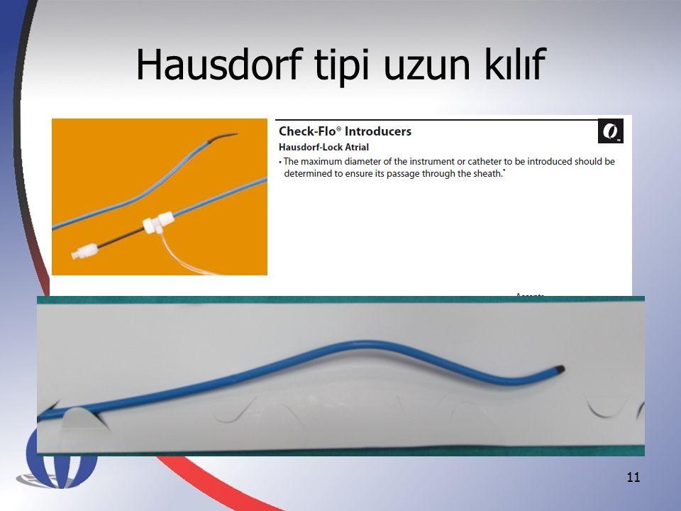 Hausdorf tipi uzun kılıf 11