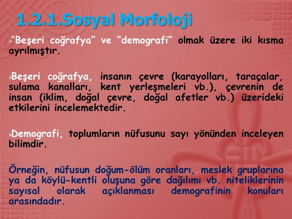 1.2.1.Sosyal Morfoloji  Beşeri coğrafya ve demografi olmak üzere iki kısma ayrılmıştır.