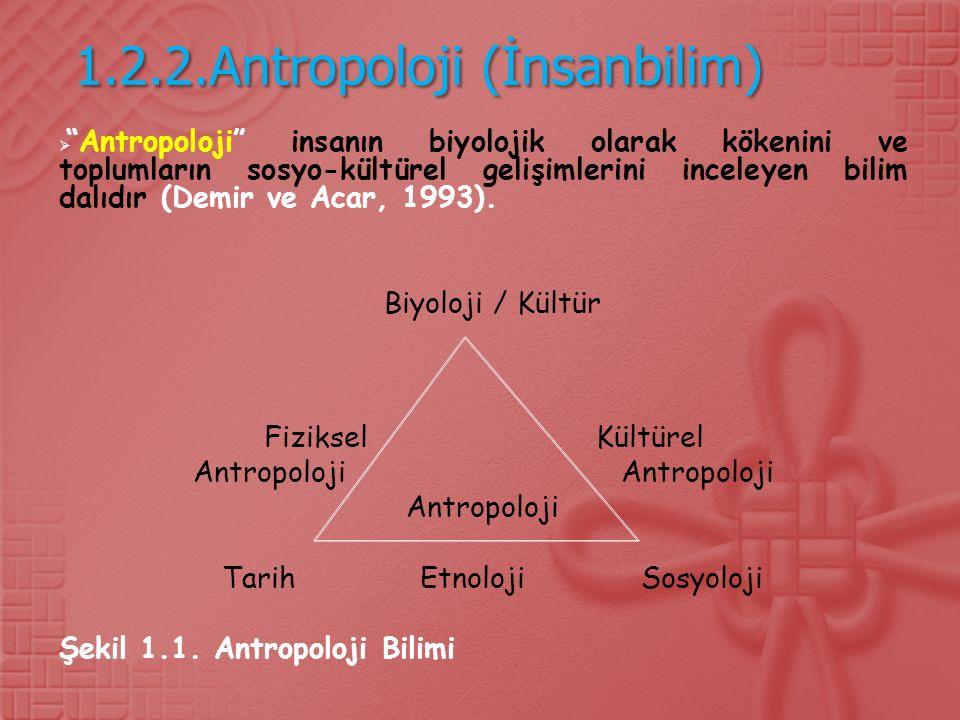 1.2.2.Antropoloji (İnsanbilim)  Antropoloji insanın biyolojik olarak kökenini ve toplumların sosyo-kültürel gelişimlerini inceleyen bilim dalıdır (Demir ve Acar, 1993).